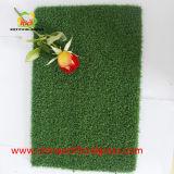 A grama artificial ostenta o relvado artificial do gramado sintético