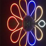 Untra 얇은 LED 네온 등 8*13