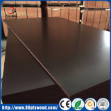 Material de construcción conjunta de Manufactury Álamo empalme WBP contrachapado marino