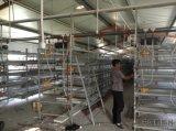 طبقة بيضة دجاجة قفص/[بوولتري فرم] منزل تصميم/آليّة يتوالد تجهيز في الصين