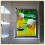 실제적인 기관의 광고 Windows 전시 가벼운 상자