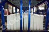 El bloque Industrial La Máquina de hielo para África Nigeria