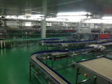 Material Handling Equipment Transportadores Sistemas transportadora modular de plástico cinta transportadora