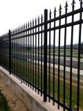 Qualitäts-preiswerte Zaun-Garten-Zaun-Zaun-Panels für Haus