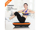 Swing Exercise Beauty Equipment Ultrathine Body Shaping Vibration Plate Slimming Machine