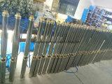 3.5stm 0.55kw elektrische tiefe Vertiefungs-Bohrloch-Pumpe für Bauernhof-Bewässerung