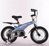 Qualquer viagem de estrutura em liga de cores no Mini-bicicletas de criança