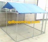Galvanisierte Kettenlink-Hundeläufer-Hundehütten mit Dach