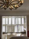 2017 선전용 아름다운 디자인 재배지 참피나무 셔터