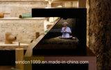 3D Holo caja, pantalla holográfica de la pirámide 3D del escaparate