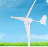 24V 500Wの小さい水平の軸線の風Turbine+の風の料金のコントローラ