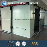Sitio sin montar de conservación en cámara frigorífica con el certificado del CE
