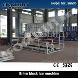 Focusun Qualitäts-Block-Eis-Pflanze