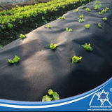 PP Spunbond non tissées avec UV additif de contrôle des mauvaises herbes/ paysage