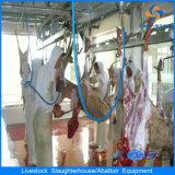 Linea di macello musulmana delle pecore della strumentazione della Camera di macellazione delle pecore