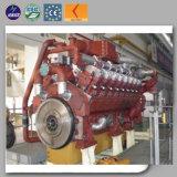 Pouvoir de sauvegarde alimenté au gaz normal de groupe électrogène avec l'engine refroidie à l'eau 1000kw