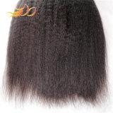 100%년 Virgin 사람의 모발 Burmese 머리 비꼬인 직모 연장