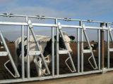 Гальванизированные скотины барьера питания икры подавая загородка