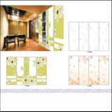 Guardarropa de la pintura del color con la puerta deslizante de la tarjeta ULTRAVIOLETA (FY425)