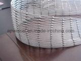 SUS304, SUS304L, SUS316, maglia della corda del filo di acciaio di SUS316lstainless
