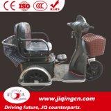 In het groot MiniVrije tijd 48V de ElektroDriewieler van 14 Duim