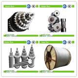 アルミニウムコンダクター鋼鉄によって補強されるACSRのコンダクターACSRのオーバーヘッドラインケーブル