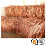 Sucata de ferro de cobre Millberry Copper Wire Scrap 99,99%