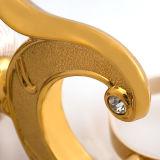 Supporto classico dorato d'ottone della chiavetta dei montaggi della stanza da bagno dell'hotel doppio