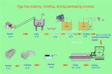 Máquina de papel girada de la bandeja de los zapatos, máquina de la bandeja del huevo, bandeja de la fruta que hace la bandeja del huevo del papel de máquina que hace la máquina