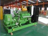 Gruppo elettrogeno industriale del biogas dei generatori Lvhuan 200kw per zootecnia & il bestiame del materiale di riporto dei rifiuti che allevano Delaction raffreddato ad acqua per la centrale elettrica