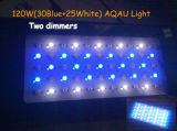 30blue+25white, Garantie Us/Au, 120W Toebehoren van het LEIDENE Aquarium van het Aquarium de Lichte (gs-120W)