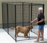 Puder-überzogene Hundehundehütte, Hundeprodukt, Hunderahmen, Hundehaus