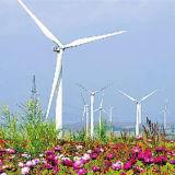 Torre de aço das energias eólicas de China