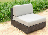 Rattan-Garten-Möbel/im Freiensofa-Bett/attraktives Sofa (SC-B8915)