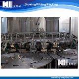 Bottelmachine van het Mineraalwater van de kostenbesparing de Automatische