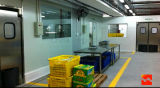 Edelstahl-Anti-Staubige Sicherheits-Tür-Gang-Durchgang-Schwingen-Ausgangs-Tür (HF-J222)