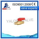Clapet à gaz en laiton (YL511)