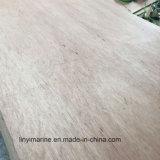 유칼리나무 합판 포플라 코어 가구 급료 9mm