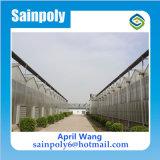 農業のための最も安いマルチスパンのパソコンシートの温室