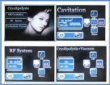 Máquina gorda vertical da remoção do RF Cryolipolysis da cavitação do ultra-som