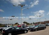 8mポーランド人80Wの駐車場(DZS-004)のための太陽街灯