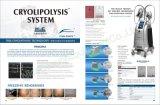 Quatre Cryolipolysis 2018Chine fabricant de la machine pour la vente/Cryolipolysis Criolipolisis Machine