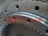 Einzeln-Reihe vier Punkt-Kontakt-Kugel-Herumdrehenpeilung 9I-1b45-1187-0352 mit internem Gang