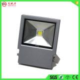 La luz del proyector LED 30W/LED Farol exterior