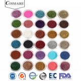 Polvere variopinta brillante del pigmento di scintillio per ombretto