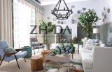 Американская самомоднейшая домашняя живущий мебель комнаты