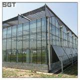 4mm 5mm Starphireの温室のための超明確な反射防止ガラス
