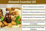 Petróleo essencial da desintoxicação do corpo do petróleo de amêndoa doce da fonte da fábrica