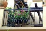 Projetos decorativos antigos galvanizados pré-fabricados da cerca do ferro feito para o jardim