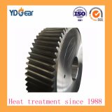 Wind Power Industry Reducer에 나선형 Pinion Gear Wheel Used